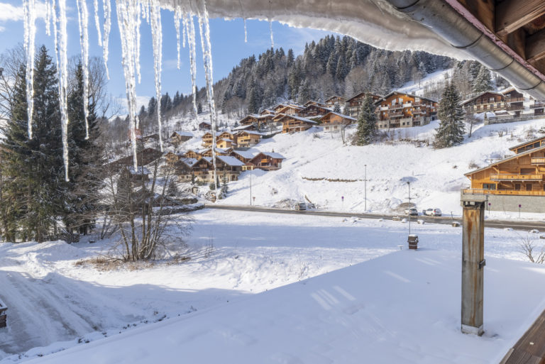 Camois d'Or icicles in winter